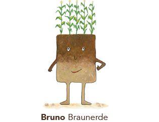Bruno Braunerde - einer der Bodentypen